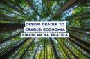 Design Cradle to Cradle economia circular na prática