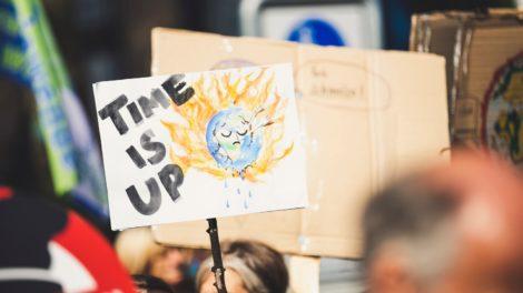 Como empreender e investir com impacto ambiental positivo no Brasil?